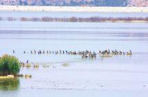 lake Karla_2