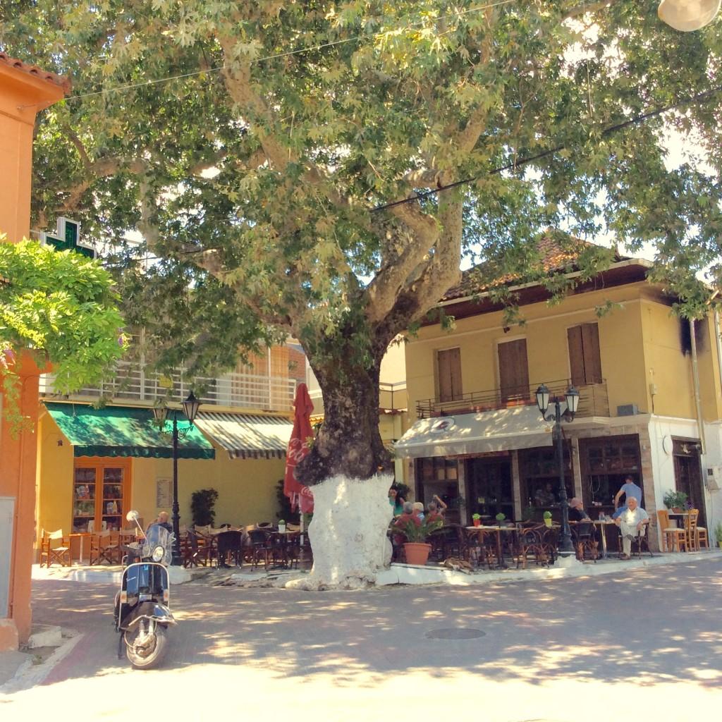 Loggos Platane Platz Peloponnes Griechenland Selianitika