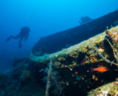 Schnorcheln: 7 Unterwasser-Wracke zeitgenössischer Geschichte