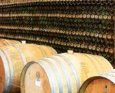 Der griechische Wein gehört in jeden weltoffenen, modernen Weinladen