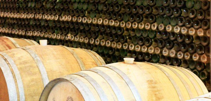 SAN_12_Boutari Winery