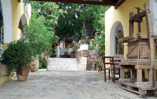 Zu Gast auf den Cretan Tour Experts