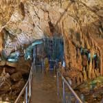 In der Höhle sind versteinerte Knochen von Panther, Hyäne, Löwe, Hirsch, Esel und der größte Knochen von Nilpferd in Europa gefunden worden. In der Nähe des Eingangs wurde Keramik gefunden, die auf die menschliche Präsenz hinweist.