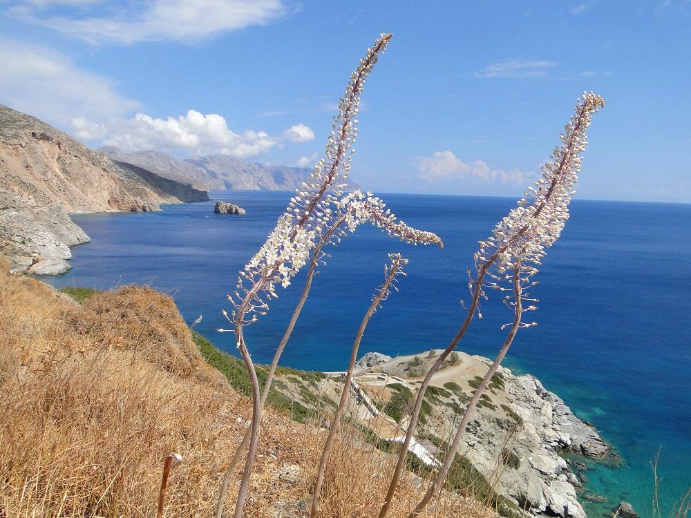 Amorgos kann Ihre erste oder sogar letzte Liebe sein.